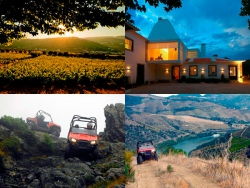 Adventure Wine Tour | Alto Douro Vinhateiro